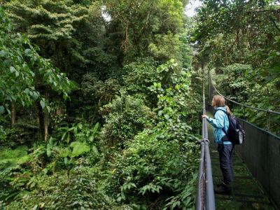 Costa Rica scholarships