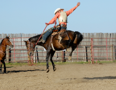 rodeo scholarships