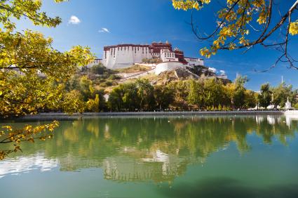 Tibet scholarships