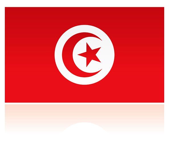 tunisia scholarships